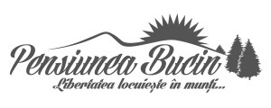 Pensiunea Bucin logo